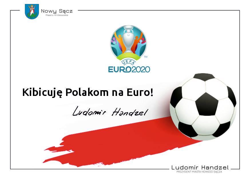 Kibicuję Polakom na Euro !